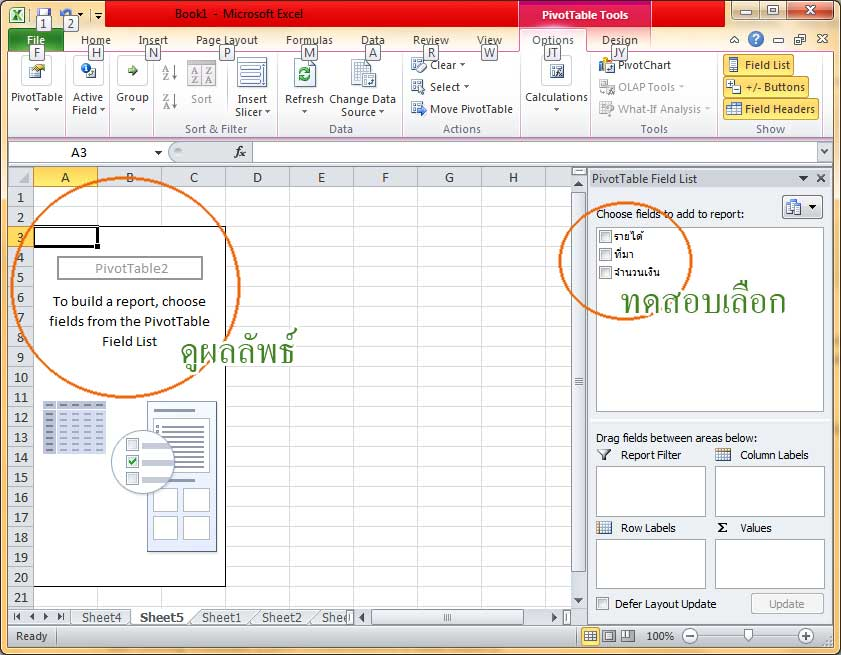 pivottable resulted